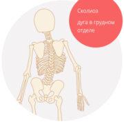 Skeleton_3